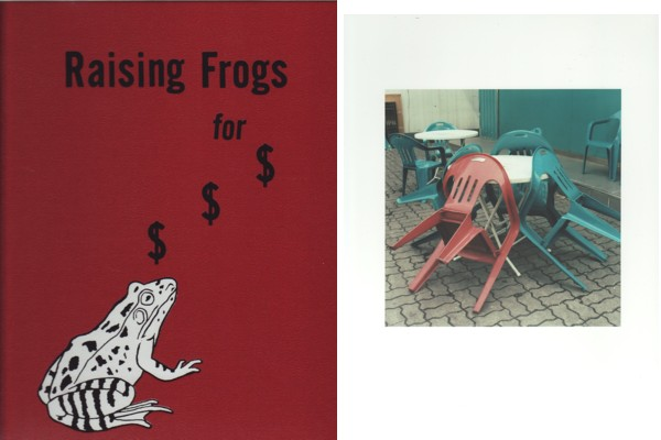 (FULFORD, JASON). FULFORD, JASON & ADAM GILDERS - RAISING FROGS FOR $ $ $ - DELUXE EDITION LIMITED TO SIX COPIES SIGNED BY JASON FULFORD WITH A SIGNED COLOR PHOTOGRAPH