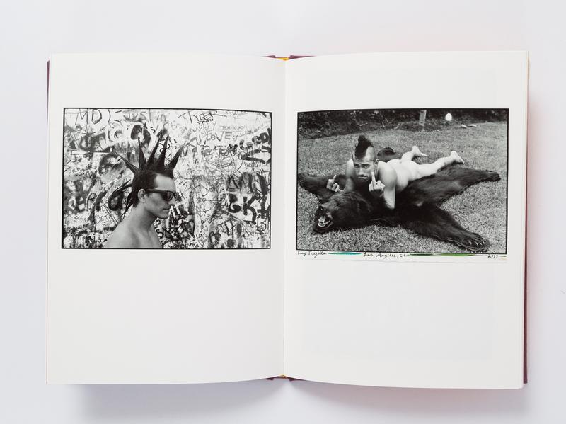 Book of the day \u003e Ed Templeton Hairdos of Defiance