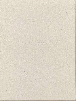 (ARTSCHWAGER, RICHARD). RELYEA, LANE - RICHARD ARTSCHWAGER (WALL WORKS / FLOOR WORKS)